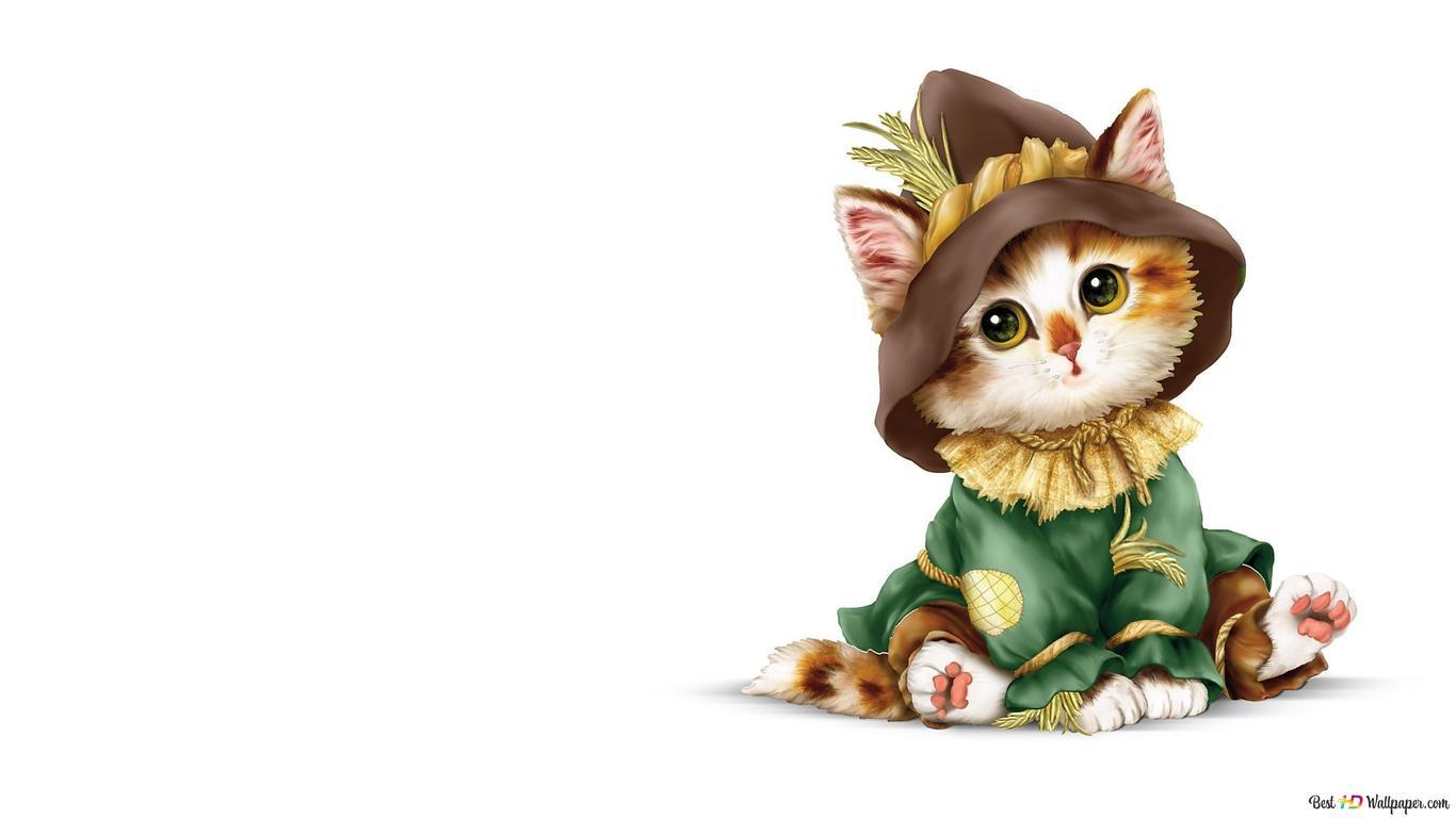 衣装でかわいい猫 Hd壁紙のダウンロード
