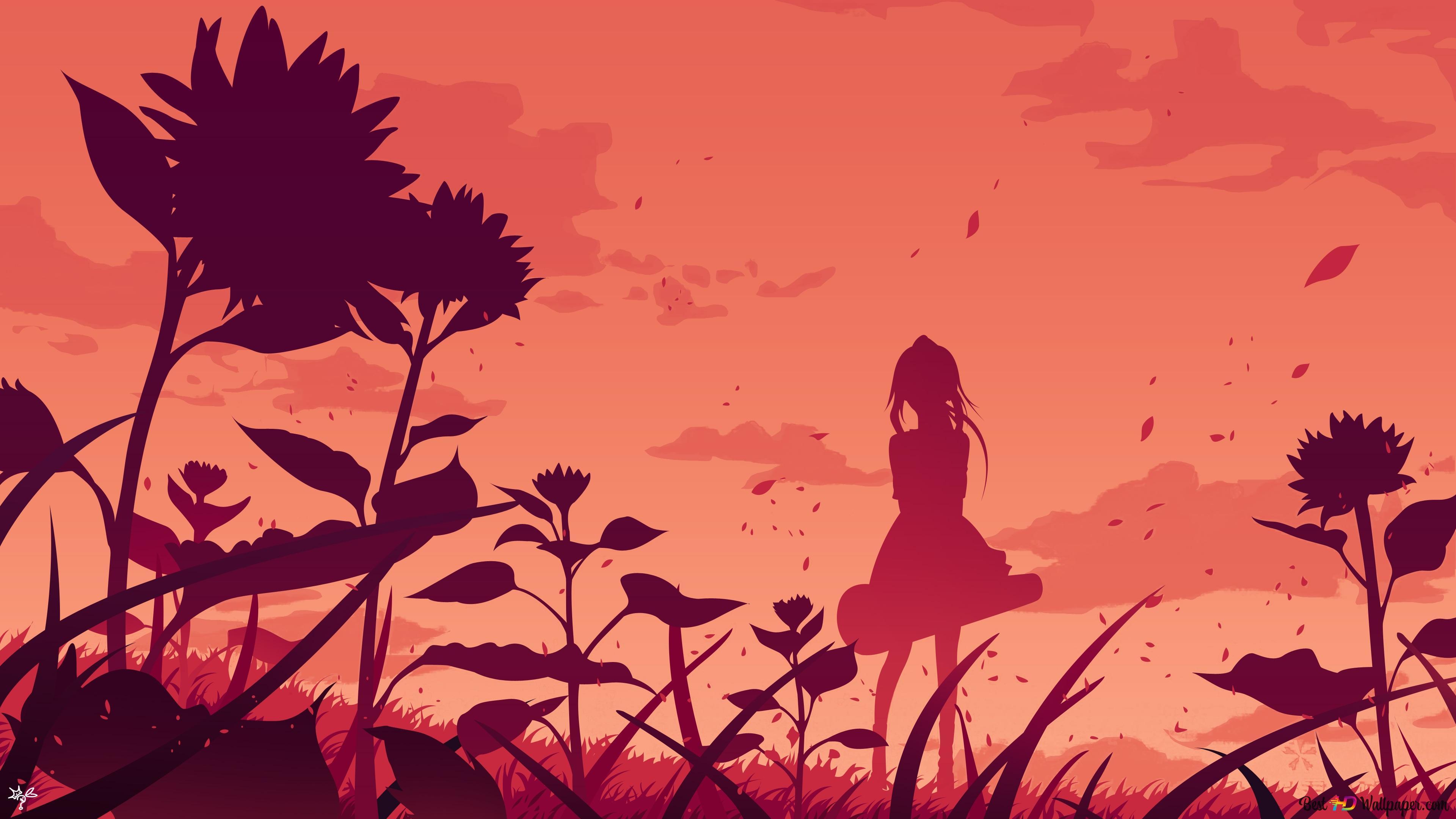 Your Lie In April Kaori Miyazono 4k Hd Wallpaper Download