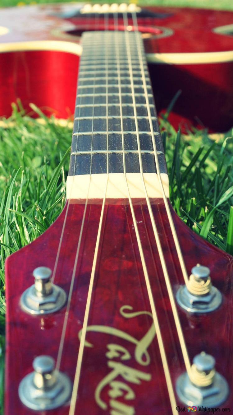 芝生の上でギター Hd壁紙のダウンロード